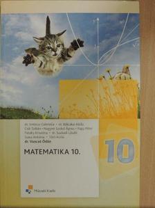Csík Zoltán - Matematika 10. [antikvár]