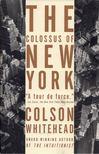 Colson Whitehead - The Colossus of New York [antikvár]