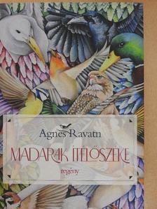 Agnes Ravatn - Madarak ítélőszéke [antikvár]