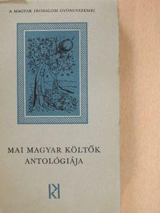 Ágh István - Mai magyar költők antológiája [antikvár]