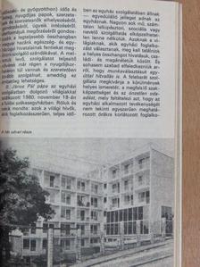 Bíró Imre - A Katolikus Szó naptára 1982 [antikvár]