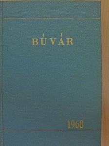 Albert László - Búvár 1968-1969. január-december [antikvár]