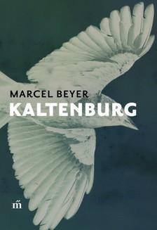 Beyer, Marcel - Kaltenburg [eKönyv: epub, mobi]