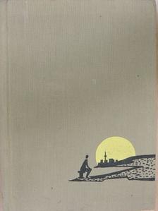 Konsztantyin Pausztovszkij - Barangolások könyve [antikvár]