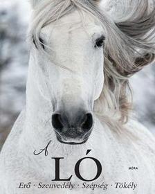 Elaine Walker - A Ló - erő, szenvedély, szépség, tökély