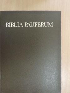 Wehli Tünde - Biblia Pauperum és előtte a Vita et passio Christi képei a Szépművészeti Múzeum kódexében [antikvár]