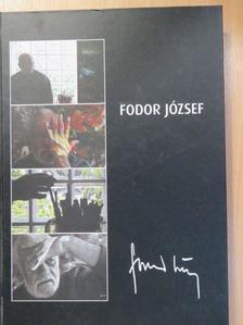 Feledy Balázs - Fodor József a krónikás festő [antikvár]