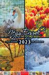 FN 087 - Négy évszak - Falinaptár 2021 (21X32)