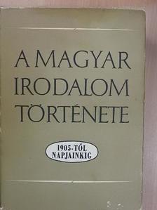 Béládi Miklós - A magyar irodalom története 1905-től napjainkig [antikvár]