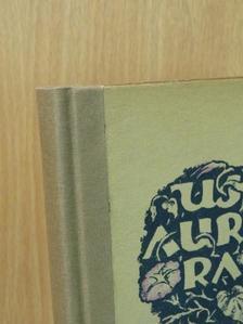 Alapy Gyula - Új Auróra az 1927. évre [antikvár]
