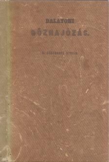 SZÉCHENYI ISTVÁN - Balatoni gőzhajózás [antikvár]