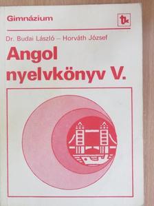 Dr. Budai László - Angol nyelvkönyv V. [antikvár]