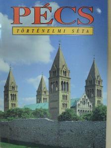 Bezerédy Győző - Pécs [antikvár]