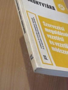 Badacsonyi György - Szervezési megoldások, vezetési és vezetőképzési módszerek 13. [antikvár]