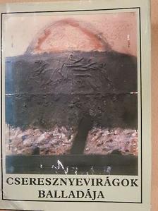 Andrej Plávka - Cseresznyevirágok balladája [antikvár]
