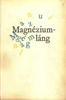 Mesterházi Lajos - Magnéziumláng [antikvár]