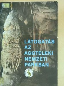 Buzetzky Győző - Látogatás az Aggteleki Nemzeti Parkban [antikvár]