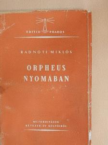 Guillaume Apollinaire - Orpheus nyomában [antikvár]
