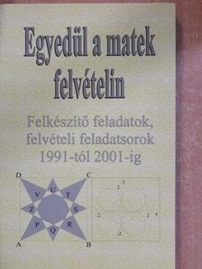Kovács Ágnes - Egyedül a matek felvételin [antikvár]