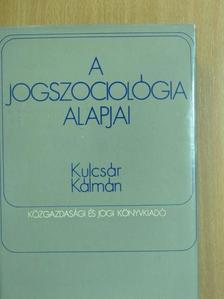 Dr. Kulcsár Kálmán - A jogszociológia alapjai [antikvár]
