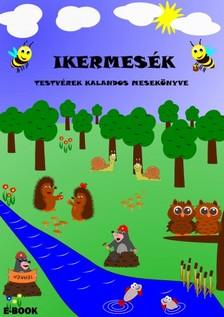 Simon József - Ikermesék - Testvérek kalandos mesekönyve [eKönyv: pdf, epub, mobi]
