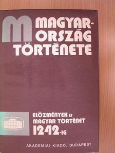 Bóna István - Magyarország története 1/2. (töredék)  [antikvár]