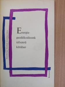 Dandó István - Energiagazdálkodásunk időszerű kérdései [antikvár]