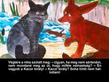 KACOR KIRÁLY - DIA -