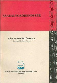 Dr. Gyulai László, Paróczai Péterné dr. - Vállalati pénzügyek II. [antikvár]