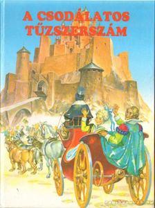 Hans Christian Andersen - A csodálatos tűzszerszám [antikvár]