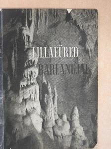 Dr. Kessler Hubert - Lillafüred barlangjai [antikvár]