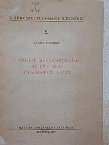 Andics Erzsébet - A magyar munkásmozgalom az 1914-18-as világháború alatt [antikvár]