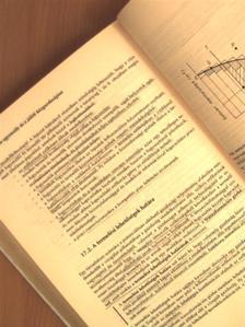 Berde Éva - Mikroökonómia [antikvár]