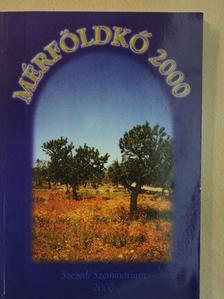 Bejan-Topsi Valentin - Mérföldkő 2000 [antikvár]