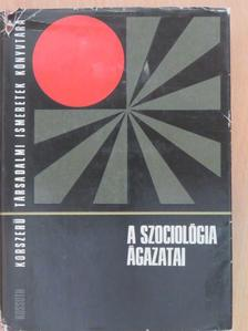 Andorka Rudolf - A szociológia ágazatai [antikvár]