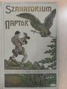 Ábrányi Emil - Sanatorium Naptár 1909 [antikvár]