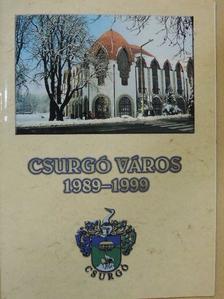 Dr. Horváth József - Csurgó város 1989-1999 [antikvár]