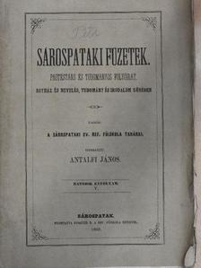 Barna József - Sárospataki Füzetek 1862. junius 2. [antikvár]
