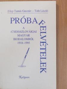 Filep Tamás Gusztáv - Próbafelvételek a (cseh)szlovákiai magyar irodalomról 1918-1995 [antikvár]