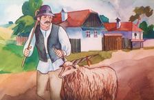 Kányádi Sándor - AZ OKOS KOS - Diafilm