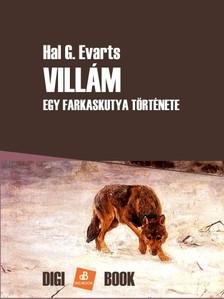 Evarts Hal G. - Villám [eKönyv: epub, mobi]
