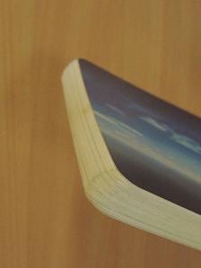 L. Ron Hubbard - Gondolat, emóció és erőfeszítés [antikvár]