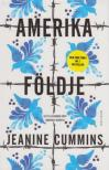 Cummins, Jeanine - Amerika földje