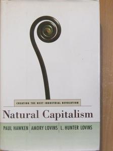 Amory Lovins - Natural Capitalism [antikvár]