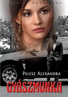 Pelesz Alexandra - Gyászmunka [eKönyv: epub, mobi]
