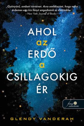 Glendy Vanderah - Ahol az erdő a csillagokig ér