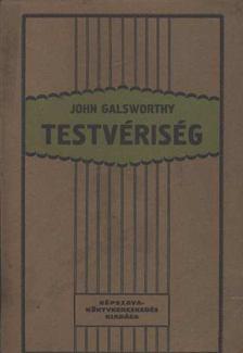 John Galsworthy - Testvériség [antikvár]