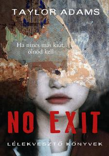 Tylor Adams - No exit
