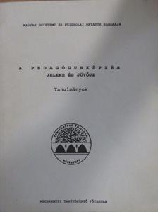 Bársony István - A pedagógusképzés jelene és jövője [antikvár]