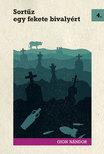 Gion Nándor - Sortűz egy fekete bivalyért [eKönyv: epub, mobi]